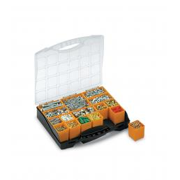 Bins Organizer 16 - Organizer with lid and 16 removable bins